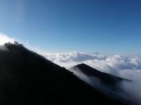権現岳から富士