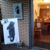 6.24「らめ猫」