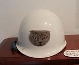 6.26「ヘルメット」