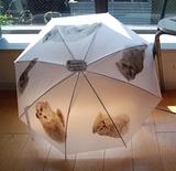 6.26「傘」