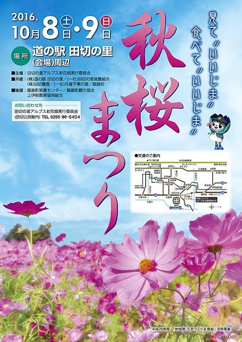 2016秋桜まつりチラシ(表)