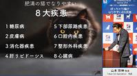 肥満猫の8大疾患