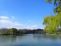 倉敷市酒津(さかず)公園