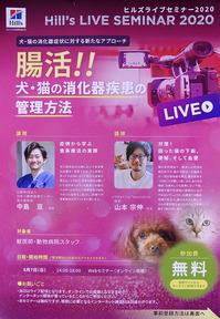 腸活!! 犬、猫の消化器疾患の管理方法