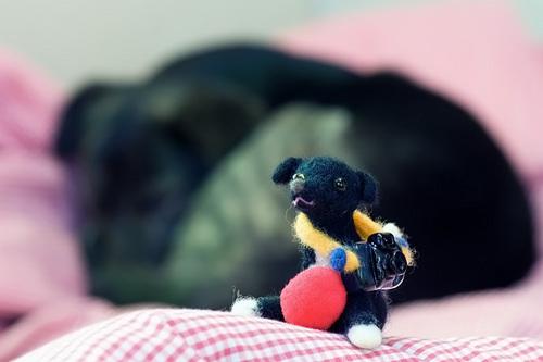 愛犬ライカ人形とバックは本人(犬?)