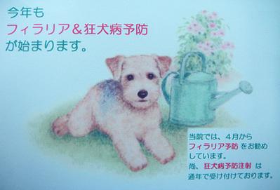 2010年 春の予防スタート!!