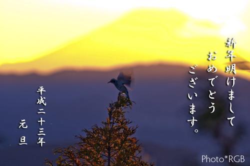 2011(H23)年 謹賀新年