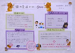 『猫の炎症マーカー:SAA院内測定は臨床を変えるか?』 とても勉強になりました。