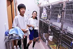 入院室(犬)の清掃