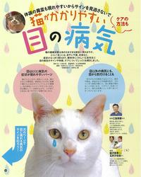 猫の目の病気 ねこのきもち誌 11月号 2014年
