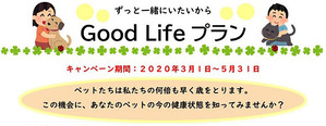 『ず〜っと一緒にいたいから 春の Good Life プラン』 予防+健康チェックとしてご利用下さい。