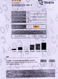 レベル4で陽性(緑内障遺伝子検査の結果)