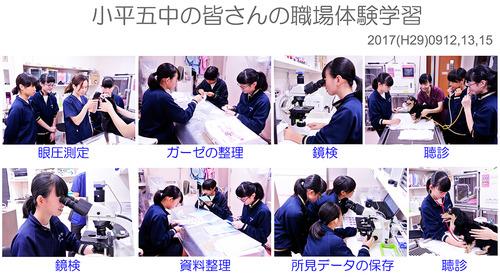 小平五中 職場体験学習 2017
