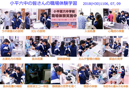 小平六中のみなさんの職場体験学習 2018(H30)1106, 07,  09