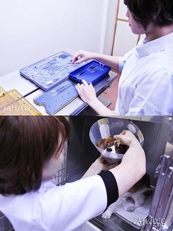 Authorized VT 白内障手術器具の準備&点眼処置