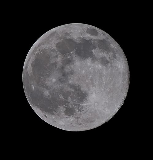 小春日和の満月 D300