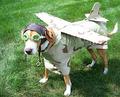 翼を付けて海外渡航 Foreign voyage with attached Wings、Helmet and Goggles