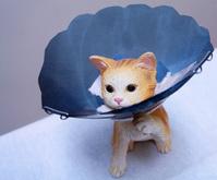 エリザベスカラー 猫フィギュア