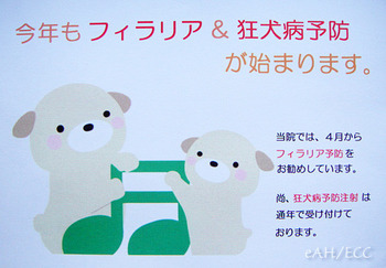 2011 春の予防DM(ダイレクトメール)