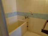 フリーデンハイム立花505浴室