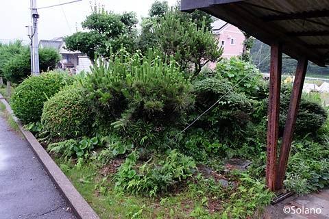 松浦鉄道・蔵宿駅構内の池庭跡