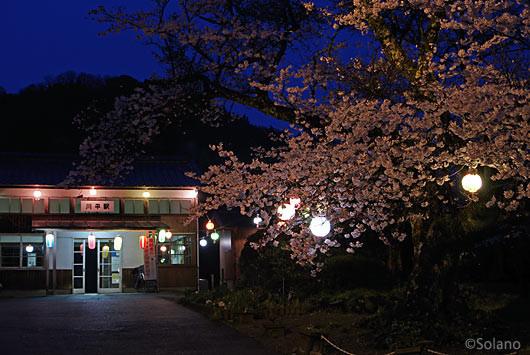 JR西日本・三江線・川平駅の夜桜