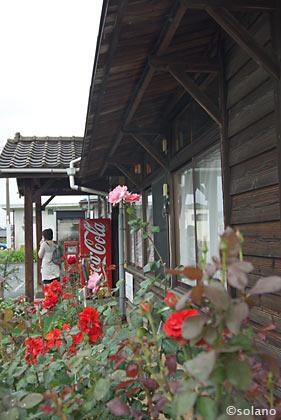 豊前松江駅、木造駅舎と薔薇
