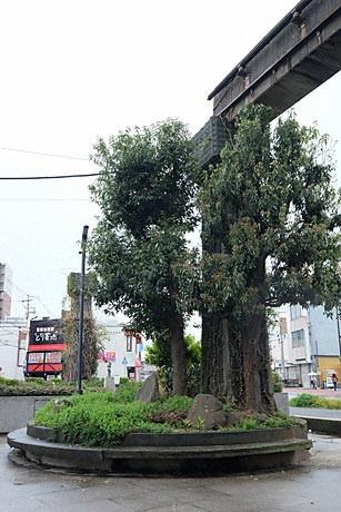姫路モノレール・大将軍駅の軌道と橋脚跡