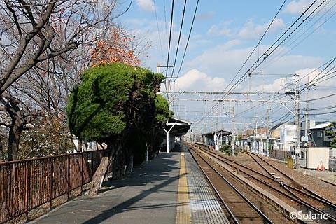 浜寺公園駅、1番ホーム南端と駅構内