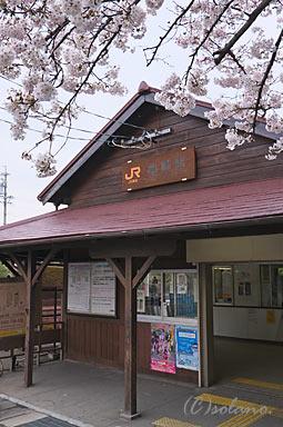 亀崎駅木造駅舎と桜