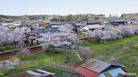 桜咲く高滝駅を俯瞰