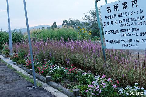 越後岩沢駅、ホームの花壇