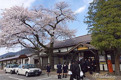 桜咲く飛騨萩原駅