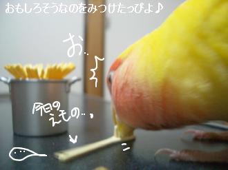 すぱぼう1