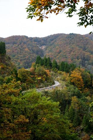 161021_01石川「林道白木峠線と白山」499