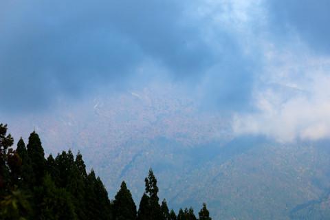 161020_05石川「林道白木峠線の白山の見える展望台」71