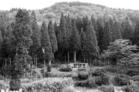161021_02石川「林道赤谷線(白木峠側より)」133