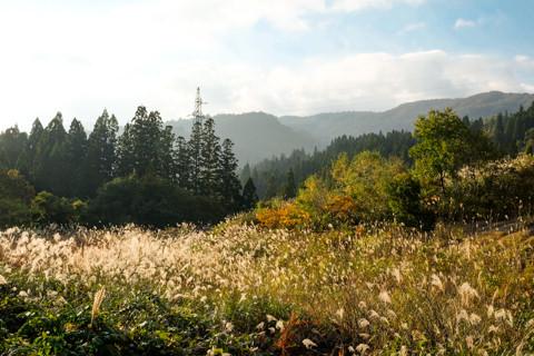 161020_05石川「林道白木峠線の白山の見える展望台」17