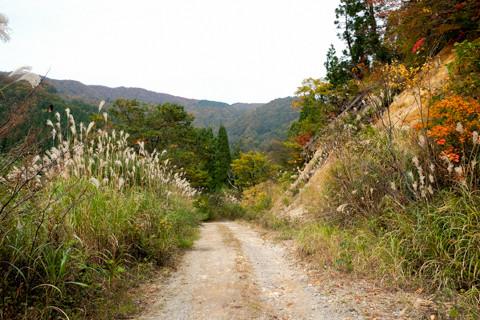 161021_02石川「林道赤谷線(白木峠側より)」052-2
