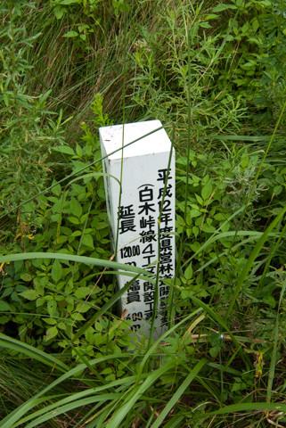 060812石川・林道赤谷線104