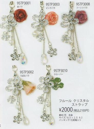 accessory1