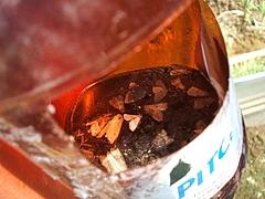 マッコルリと殺虫剤でムシが自殺