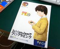 ichigoprogram-12