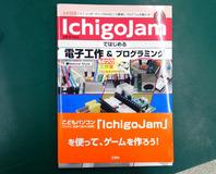 ichigoprogram-11