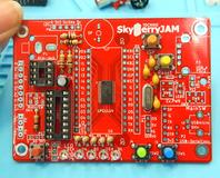 SkyBerryJAM-1-30