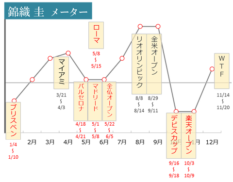nishikori graff