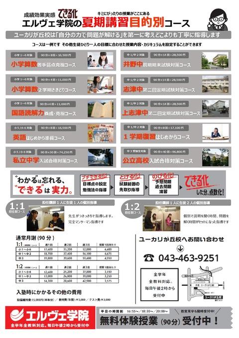 ユーカリ2017 夏募集版(ウラB4)-001