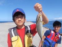 御蔵島堤防でルアー釣り