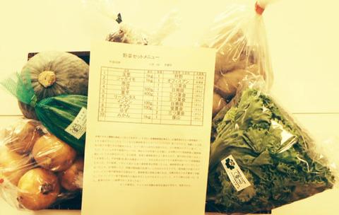 熊本からのお野菜20161109