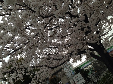 2014-04-02-15-53-50